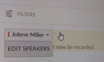 GTM edit speakers1.jpg